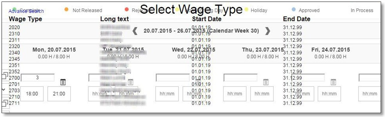 2.Select Wage Type.jpg